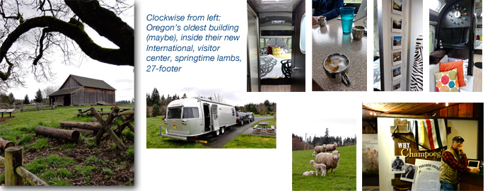 Visiting Airstream friends at Champoeg State Park, Oregon