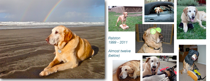 Beloved Ralston, Airstream companion